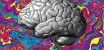 Brain scans show how LSD works to unlock the brain and treat depression