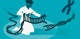 Viewpoint: Slew of new books 'accept the baseless premise propounded by many CRISPR researchers that gene modification of embryos can be done safely', claims cell biologist