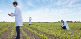 Viewpoint: Farm-to-Fork plan suggests Europe wants sustainable farming. So why do EU politicians ignore the 'green' benefits of GM crops?