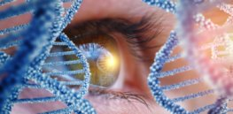'It would be huge to see my granddaughter': In an attempt to cure blindness, scientists use CRISPR to edit DNA inside patients' bodies