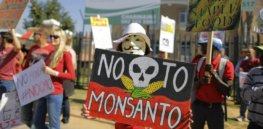 Mexican court upholds 2024 government ban of Bayer's Roundup weedkiller