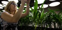 Viewpoint: How should EPA regulate next-generation GMO Bt insect resistant crops? Proposals left over from Trump Administration don't all align with the science