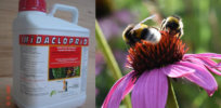 'Risks are acceptable': On verge of banning neonicotinoid imidacloprid, Canada reverses course, says bees will not be adversely impacted
