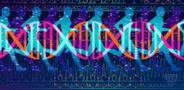 Genetic astrology? Nutrigenomic DNA tests: Can you prime your health by tailoring diet and exercise to your biology?