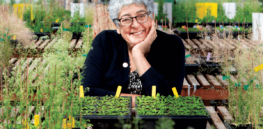 A race against time: One biologist's mission to 'fight climate change with plant genetics' before her Parkinson's disease advances