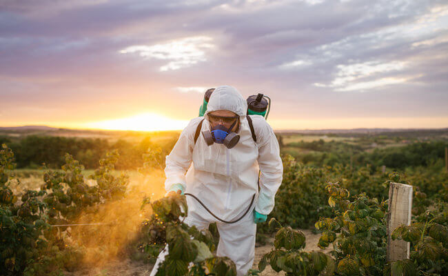 Top EU court upholds partial ban on 3 neonicotinoid pesticides, in bid to halt alleged honeybee losses