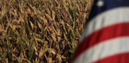 Can the Biden Administration challenge Mexico's decision to ban glyphosate weedkiller and GMO corn?