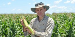Viewpoint: 'Bt corn is the way to go' — Why Australia needs insect-resistant GE corn to fight invasive fall armyworm moth infestations