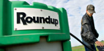 'Flawed process leads to flawed science': Why the WHO's International Agency for Research on Cancer claims glyphosate causes cancer