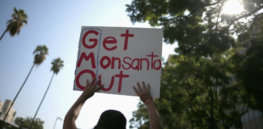 Viewpoint: Battling corporate takeover of agriculture? Activists who oppose GMOs and other forms of farming biotechnology hurt vulnerable populations they claim to want to protect