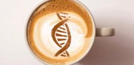 Cappuccino or espresso? How genetics actively regulates the amount of coffee we regularly drink
