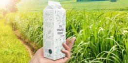 Reducing plastic waste: Recyclable eco-friendly, plant-based packaging in development could dramatically reduce microplastic pollution