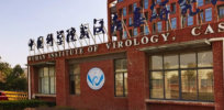 Viewpoint: Why the Wuhan lab escape theory explaining the origin of the global pandemic isn't going away anytime soon