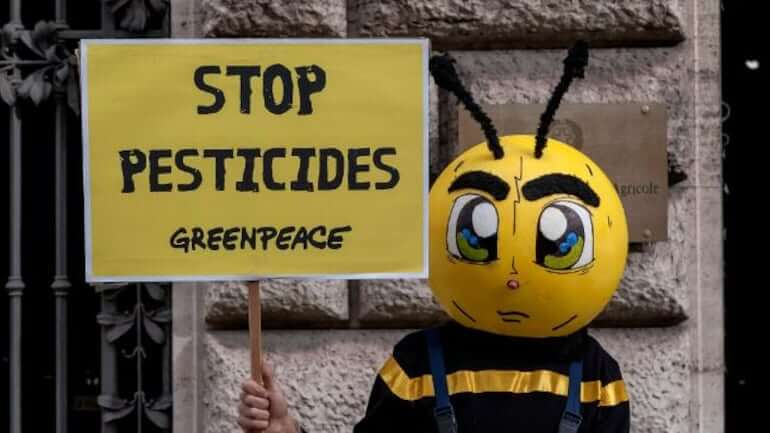 Viewpoint: Why banning neonicotinoids is a well-meaning but misguided strategy to protect bees and other pollinators
