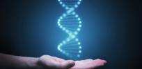 CRISPR milestone: Crippling transthyretin amyloidosis disease now treatable through gene editing, paving way for addressing other genetic diseases