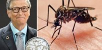 Is Bill Gates behind the release of disease-fighting sterile GMO mosquitoes in Florida?