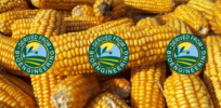 Viewpoint: Soon-to-be-required bioengineered food label is 'in the worst traditions of government meddling'