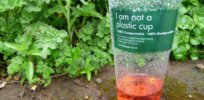Replacing unrecyclable plastics: Sustainable 'biopolymers' are made from tree bark and compost