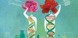 Does DNA 'determine' our health? The way you live your life can significantly modulate the effects of our genetic endowment