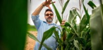 Viewpoint: Why we need to remove 'politically-motivated regulatory barriers' hindering genetically modified crop innovation