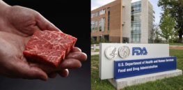 Is the FDA up to the task of reviewing the coming onslaught of lab-made cell-based meat and seafood?
