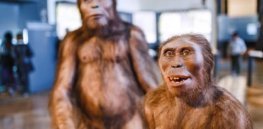 Homo sapiens reevaluated: Why the definition of 'modern human' is undergoing a revamp
