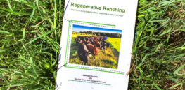 Viewpoint: Regenerative ranching – promoted by organic activists from Vandana Shiva to the Organic Consumers Association — has turned out to be a massive scam