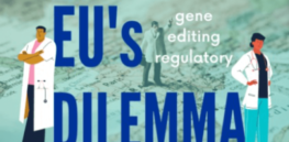 Viewpoint: While most of Europe remains in thrall of crop biotechnology rejectionism, sustainability promises of CRISPR gene editing may soon lead to 'political deconstruction'