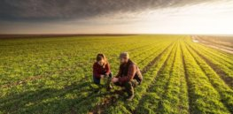 Viewpoint: Can agroecology cut European food imports and grow more on less land all while cutting greenhouse gas emissions? It would take a lot
