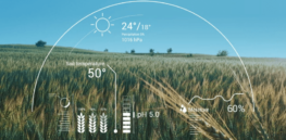 How AI and gene editing can combine to revolutionize climate-smart farming