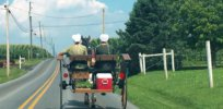 Vaccine hesitancy's roots in deeply religious and technophobic Amish community