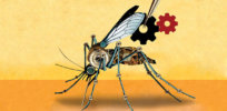 'Genetic engineering the wild': Crucial questions to ask as we enter the era of gene drives