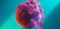Epstein-Barr virus link? Tantalizing clues suggest EBV potentially triggers COVID long-haul symptoms