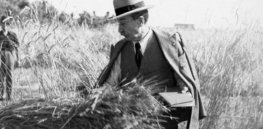 Who are the scientists who paved the way to modern crop breeding?
