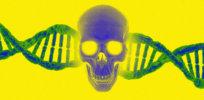Is genetic engineering unleashing threat of increased bioterrorism and biological warfare?