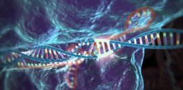 Video: Curious about the full implications of the CRISPR gene editing revolution? Here's a primer