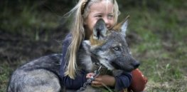 How dogs and humans developed our symbiotic relationship