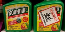 Viewpoint: How does the scientifically bankrupt claim glyphosate poses harm to humans remain popular? By dishonest 'reporting,' including from scientists who put ideology over evidence