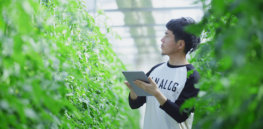 'Digital agriculture has the power to be truly disruptive': How AI and robotics are helping Japan overcome land challenges and dramatically increase farm yields