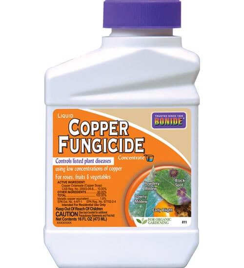 liquid copper concentrate