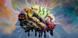 Do our brains predict how we think? Psychedelics may help answer that question