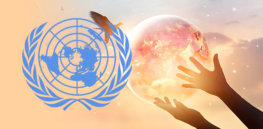 UN's ambitious biodiversity plan puts 'regenerative agriculture' at the forefront