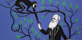 Evolutionary science has seen a tsunami of new revelations — but have they upended the central tenets of Darwinism?