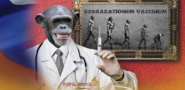 Russian internet meme: No, the COVID vaccine can't turn people into chimps