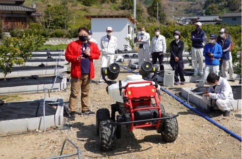 How robots are filling in for bees and helping pollinate Japan's apple orchards