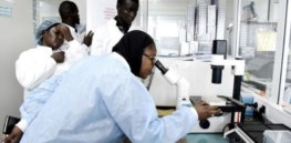 Biotechnology research and development is the cutting edge of Africa's hoped-for sustainable green revolution