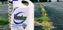 Viewpoint: Politics — not science — driving Canadian policy decisions over glyphosate and other agricultural tools