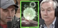 Why Joe Rogan is wrong about COVID mutations: 'Evolution is, right now, occurring in the body of people who are not vaccinated'