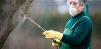 Does paraquat cause Parkinson's disease? An academic review of reviews says 'no'