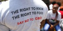 Viewpoint in the Daily Beast: Reactionary 'COVID biotechnophobia' was seeded by anti-GMO activists and compliant media — and it continues today